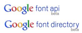 Google Fonts API