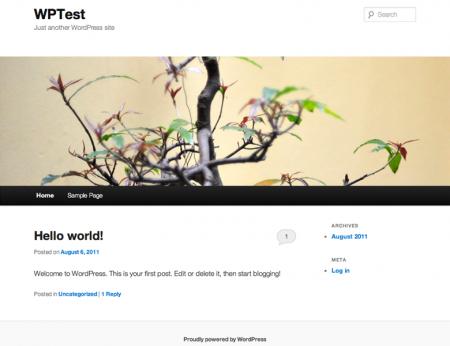 Theme twentyeleven mặc định của WordPress