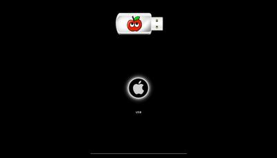 USB cài đặt Mac Lion All In One